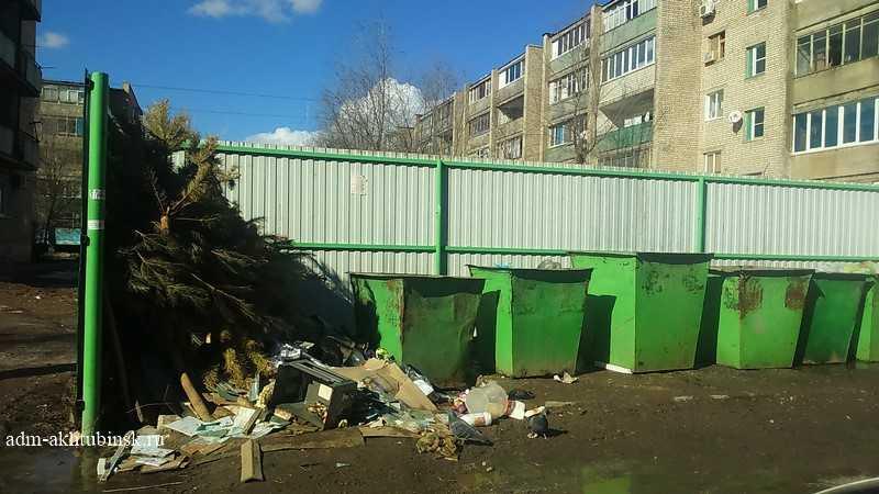 Вывоз мусора – обязанность управляющей компании