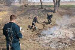 За сжигание сухой растительности и мусора — штраф