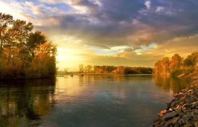В астраханских реках обнаружили зараженную рыбу