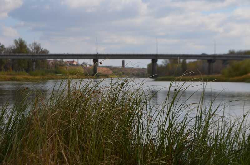 Спасти Волгу: как сохранить главную водную артерию России