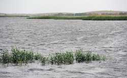 Власти будут оповещать астраханцев о паводке через соцсети