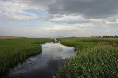 В Астраханской области сложилась пугающая ситуация с паводком