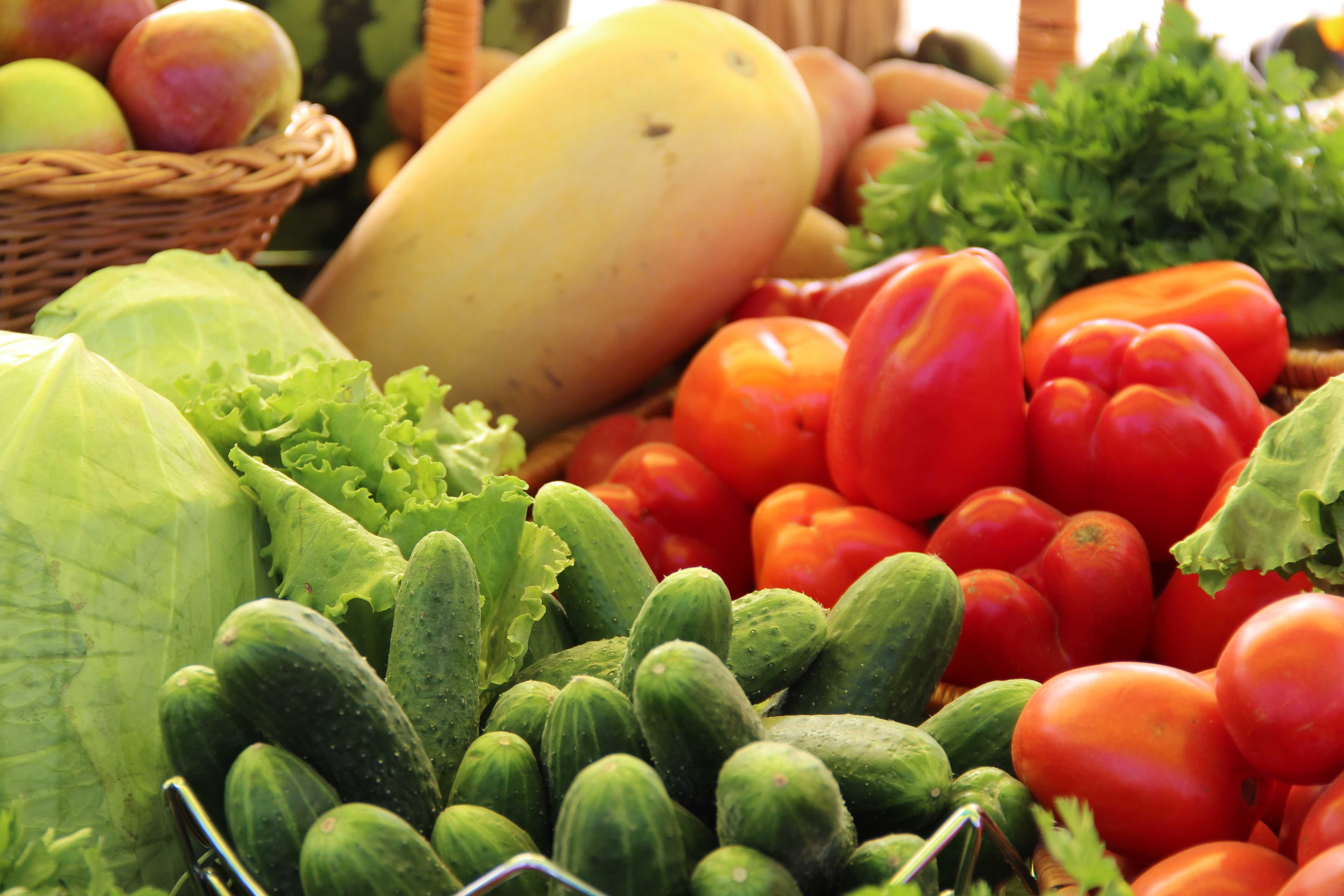 В Астраханской области испытывают новые сорта овощей