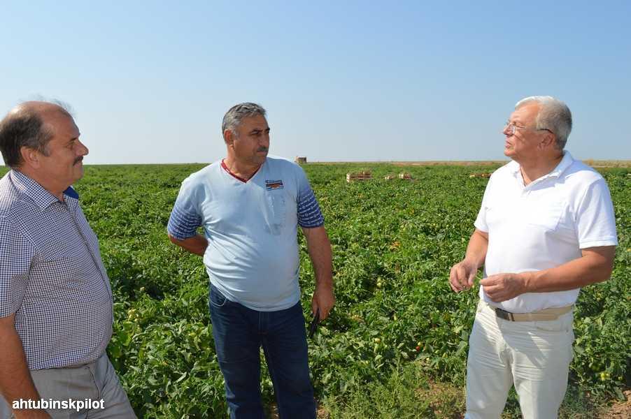 В Ахтубинском районе трудятся крепкие сельхозники, знающие землю, на которой живут и работают