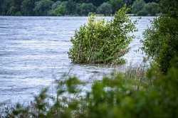 Уровень воды в Волге — рекордно высокий и продолжает расти