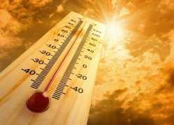 В ближайшие дни в Астрахани и области сохранится 40-градусная жара