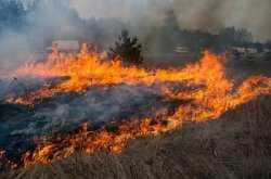 Полторы тысячи военнослужащих тушили астраханский природный пожар