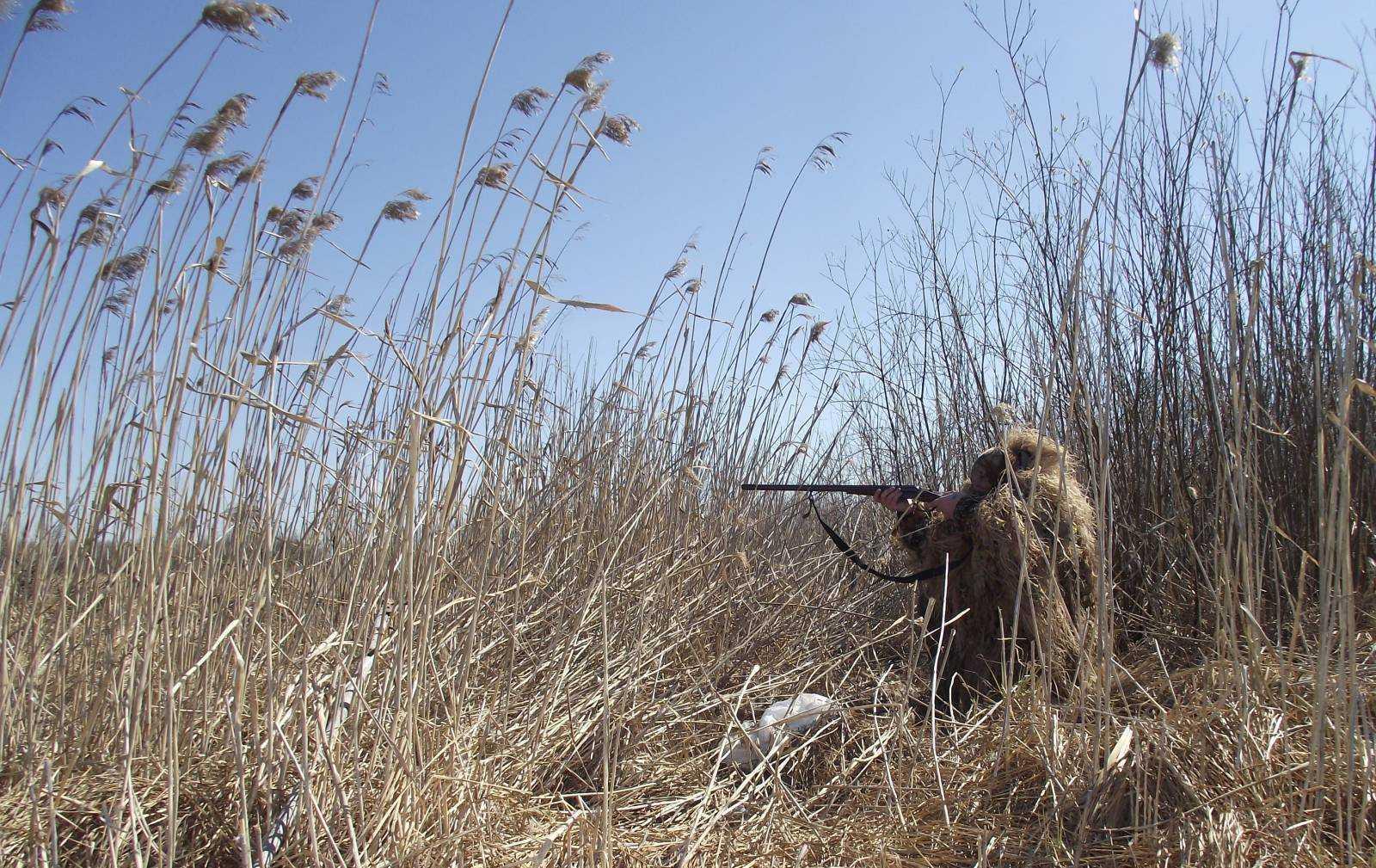Открытие сезона охоты в Астраханской области не обошлось без нарушений