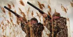 В субботу в Астраханской области откроется сезон охоты