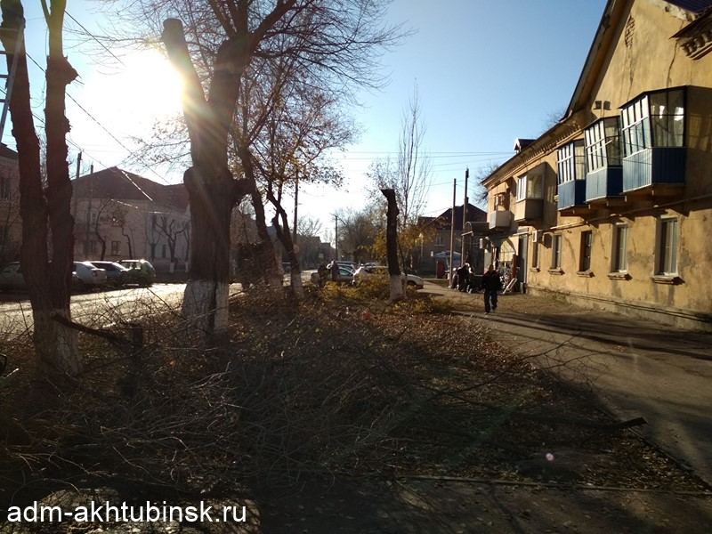 Опиловка деревьев в городе Ахтубинск