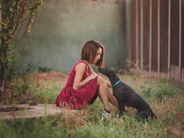 Ахтубинская дама с собачками