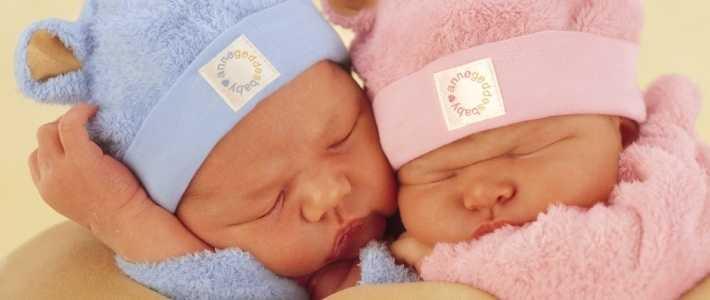 Как получить новые пособия при рождении близнецов