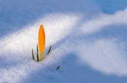 Что изменится в жизни астраханцев с 1 марта