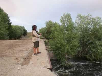 Волжская природоохранная прокуратура против уничтожения мошки с помощью паводковых вод