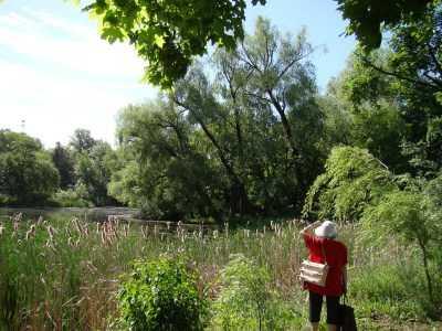 В астраханских реках высокий уровень воды