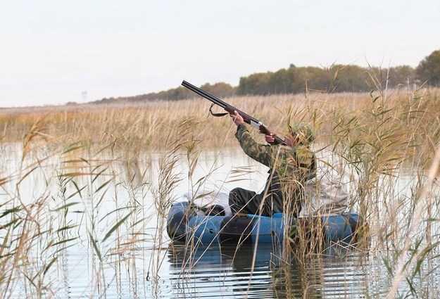 Сезон охоты в Астраханской области на носу. Что обязательно нужно знать охотнику