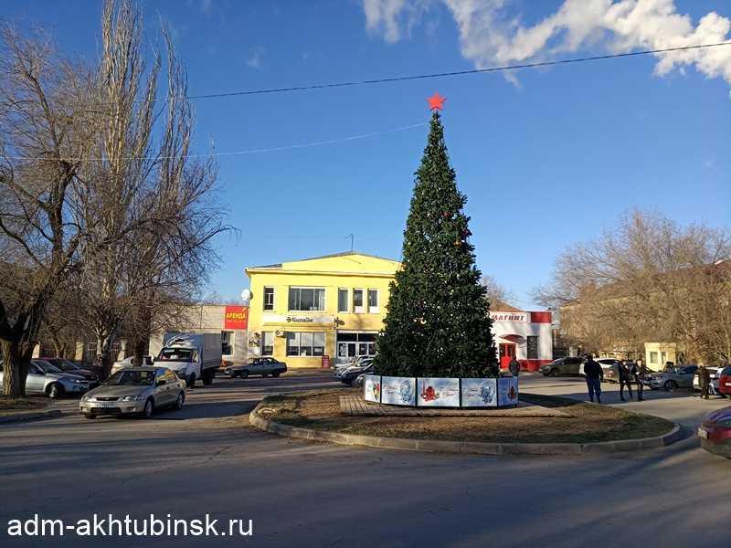 В Ахтубинске установлена первая новогодняя ель