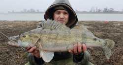 Астраханцу на рыбалке попалась такая рыба, что он не поверил своим глазам