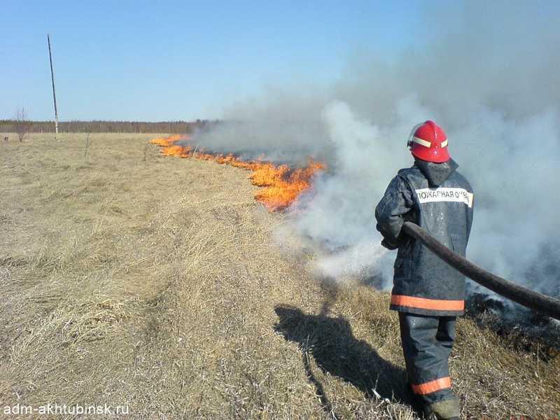Контролируемые выжигания