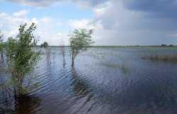 В Астраханской области введён режим повышенной готовности из-за паводка, но вода приходит пока медленно