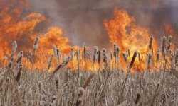 Achtung! Fouer! Почти все астраханские районы ждут пожароопасные дни