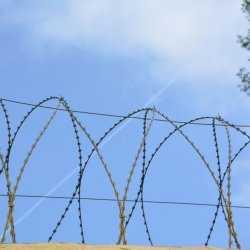 Шестерых нелегалов задержали на волгоградской «оптовке»