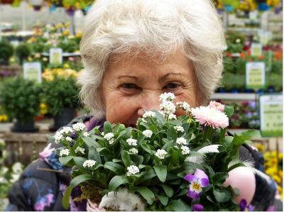 В Госдуму внесли проект об индексации для работающих пенсионеров