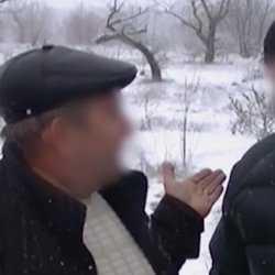 Под Волгоградом лесничий задержан за вырубку лесов на дрова