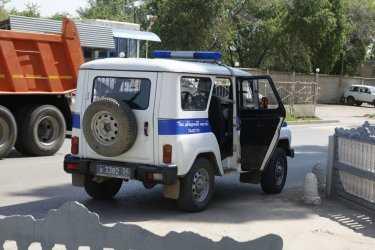 Полураздетую девушку насмерть загрызли собаки на пустыре в Волгограде