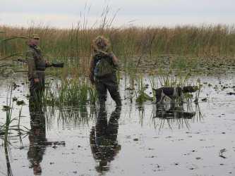 Половодье сказалось. Эксперт сделал прогноз на сезон охоты в Астраханской области