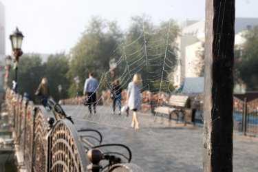 Туманы и похолодание придут в Астраханскую область