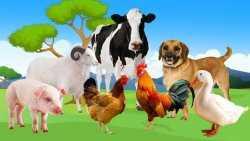 ВС запретил разводить на садовых участках сельскохозяйственных животных
