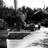 image2236